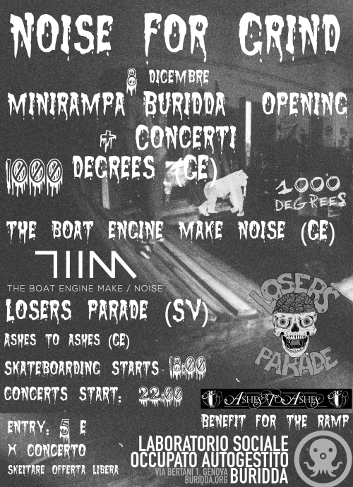 Noise  for  grind (mini-ramp opening+concerts)